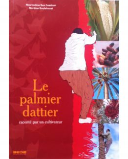 PalmierDattierCarre