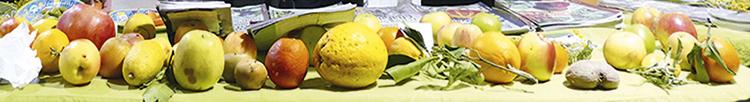 stand-fruitsoublies-VandanaShiva