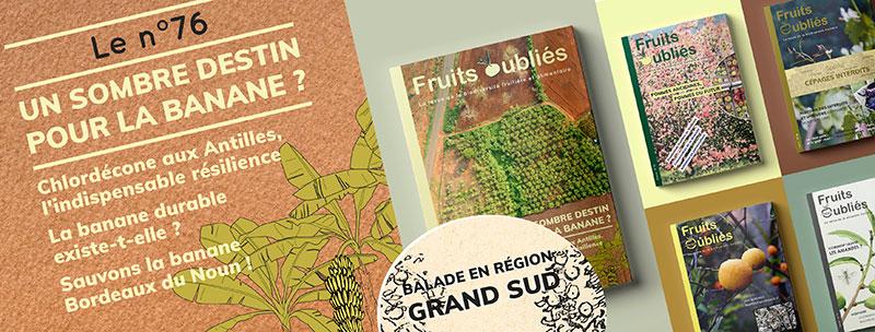 revue banane fruits oubliés
