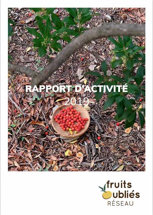 rapport activité FOR